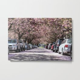 Cherry Blossoms over E 10th Ave Metal Print