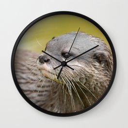 Otter Looking Behind Him Wall Clock