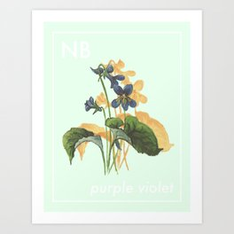 Provincial Flowers - New Brunswick Art Print