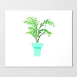 Palm Plant Canvas Print