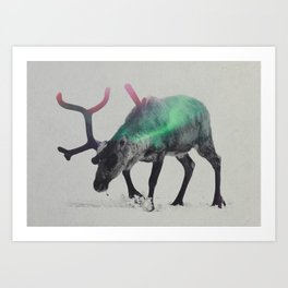 Reindeer In The Aurora Borealis Art Print