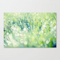 SPARKLING GRASS Canvas Print