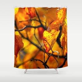 Beautiful orange linden tree leaves Shower Curtain