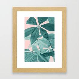 Pachira Aquatica #5 #foliage #decor #art #society6 Framed Art Print