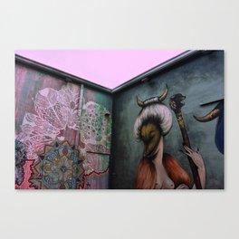 Art Walls and Pink Skies Canvas Print