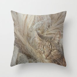 Warmth and comfort Throw Pillow