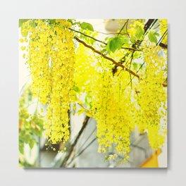 summer flower branches Metal Print