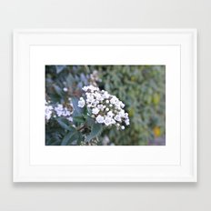 Cluster Framed Art Print