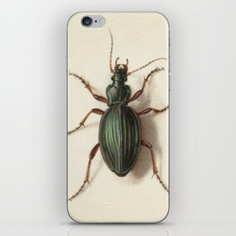 Vintage beetle iPhone Skin