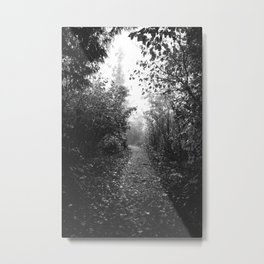 Foggy Forest | Black and White Landscape | Travel Photography Metal Print