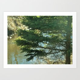 Outdoors, Rifle River, Nature, Adventure, Fishing, Relaxation Art Print