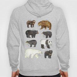 Bears Hoody