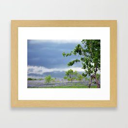 Navarro County, Texas #4 Framed Art Print