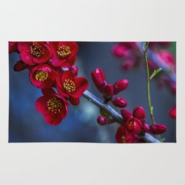 Red Flowering Quince Rug