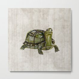 Little Turtle, Forest Animals, Woodland Decor, Woodland Art, Metal Print