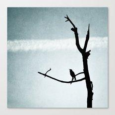 Le petit Oiseau Canvas Print