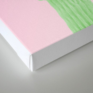 Cactus Pink Canvas Print