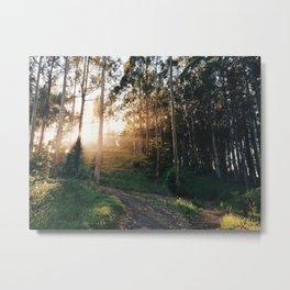 Bolinas Light Rays Metal Print