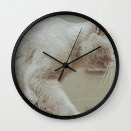 Cat by zhenzhong liu Wall Clock
