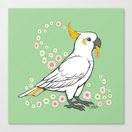 Fluffy The Sulphur Crested Cockatoo Canvas Print