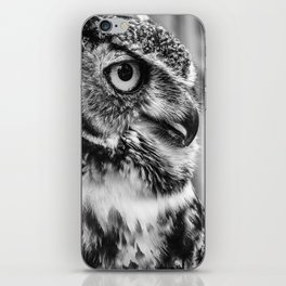 Bird Photography | Owl Black and White Minimalism | Wildlife | By Magda Opoka iPhone Skin