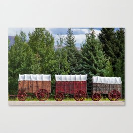 You Died of Dysentery Canvas Print