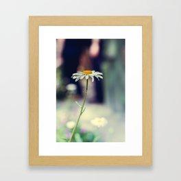 Daisy I Framed Art Print