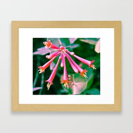 Flower Series 1#3 Framed Art Print