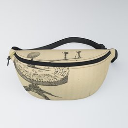 Guy's Elements of astronomy (1864) - A Planetarium Fanny Pack