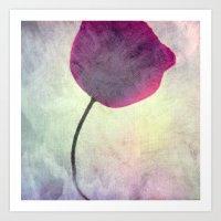 poppy Art Prints featuring POPPY by Claudia Drossert