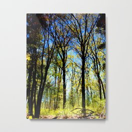Summer slips into fall Metal Print
