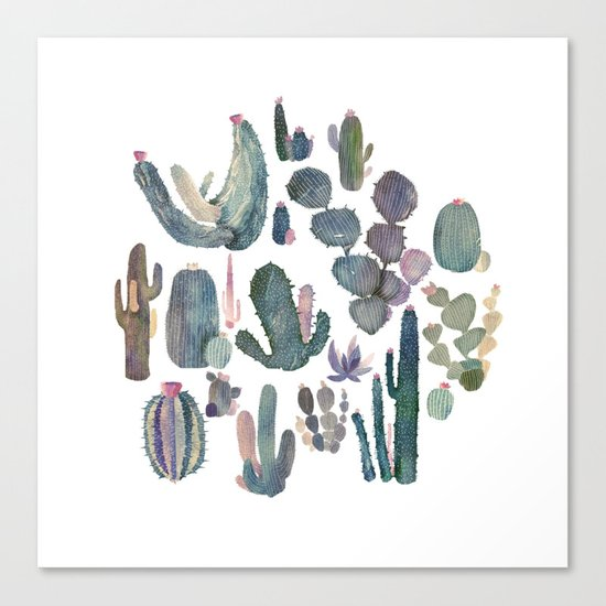 cactus fat Canvas Print