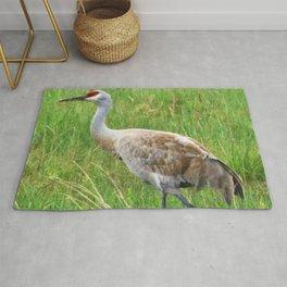 Bird Series: Sandhill Crane Rug