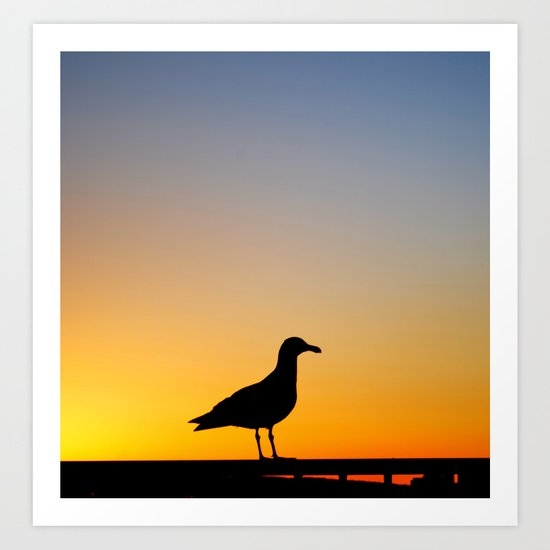 Seagull Sunset Art Print