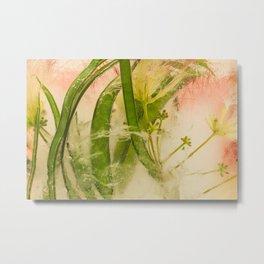 Mimosa Tree #13 Metal Print