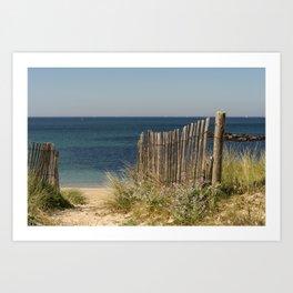 Path to beach Art Print