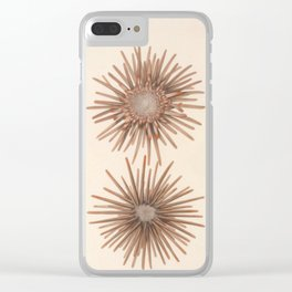 Naturalist Sea Urchins Clear iPhone Case