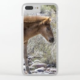 Salt River Wild Foal Clear iPhone Case