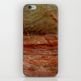 Vuelo de un pajaro iPhone Skin