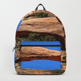 Amazing Landscape Arch - Panorama Backpack