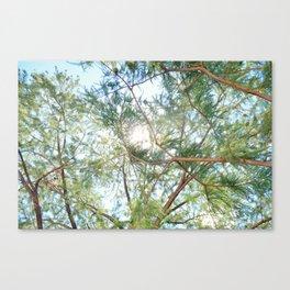 lush brush Canvas Print