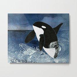 Killer Whale Orca Metal Print