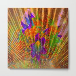 radiant colors Metal Print