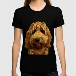 Red Cockapoo / Doodle Dog  T-shirt
