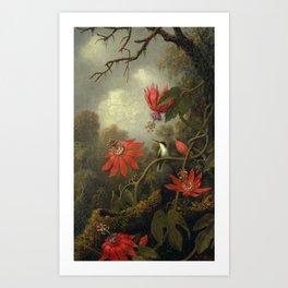 Hummingbird and Passionflowers , Martin Johnson Heade (1819-1904) Art Print
