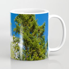 cheering the elders Coffee Mug