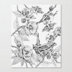 Moths & Camellias Canvas Print