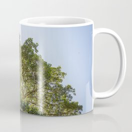 Under the Canopy Coffee Mug