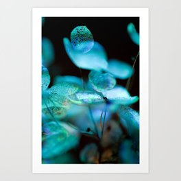 Dried Hydrangea in Blue Winter Colors - Macro Photography Print - Floral Detail Wall Art Art Print