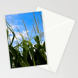 Car Food Stationery Cards